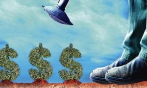Geld-groei-442x266