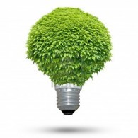green-lightbulb1