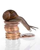 slow-finances-7008365