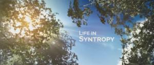 syntropy